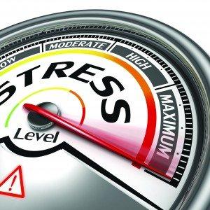 First Choice - Stess Levels