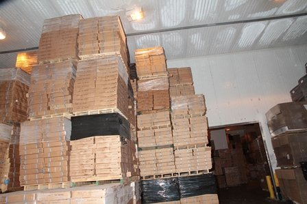 Stacked boxes at Interfish Limited