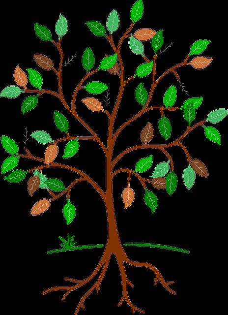 tree-684764_640