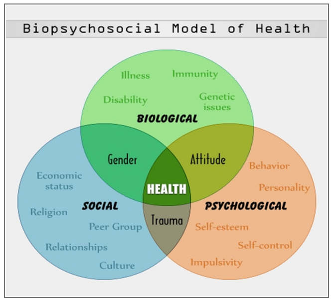 Biopsychosocial Model of Health