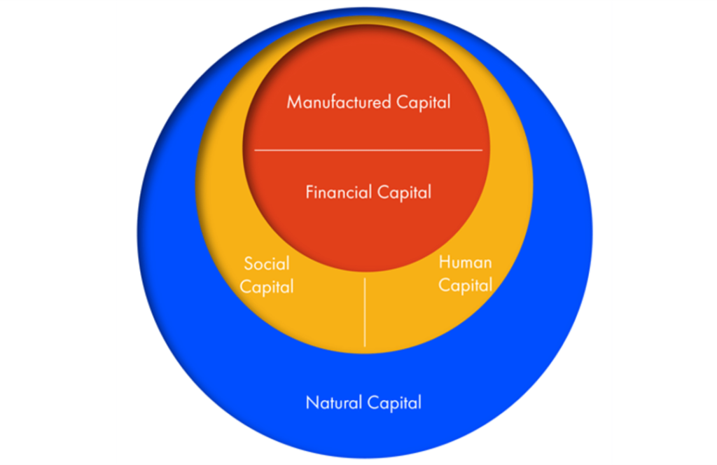 The Five Capitals - a framework for sustainability